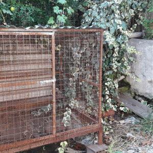 Κουνελιαστρα τριώροφη για ζευγάρωμα και κλουβί για πουλιά με σιδερένια ποδαρακια 150 το ξύλινο 80 Το σιδερενιο