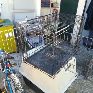 85dbcf2fef90 Σπιτάκι μεταφοράς σκύλου ή γάτας - € 20 - Vendora.gr
