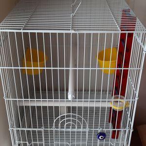 3c47d0d20406 Σπιτάκι μεταφοράς σκύλου ή γάτας - € 20 - Vendora.gr